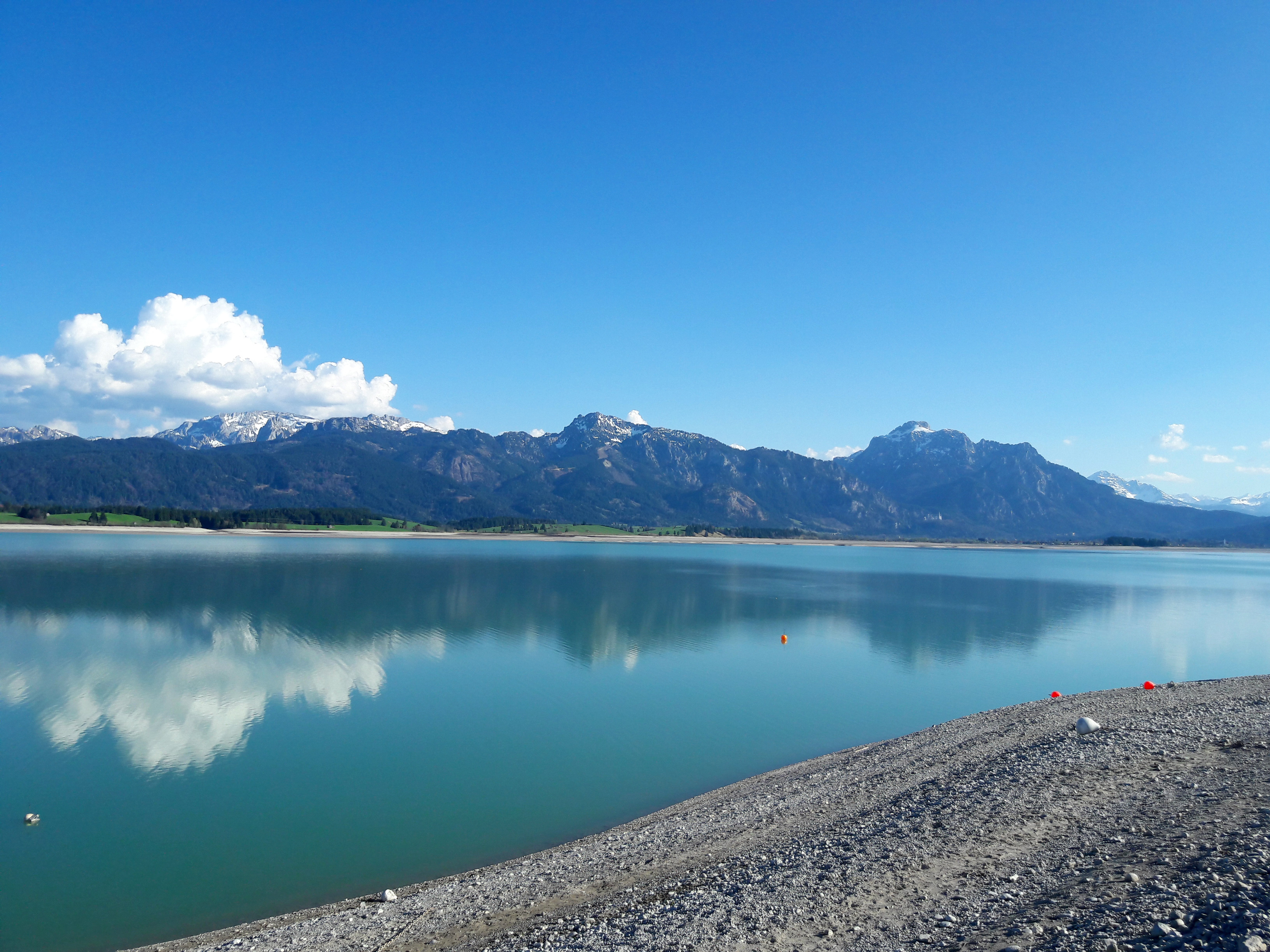 Forggensee