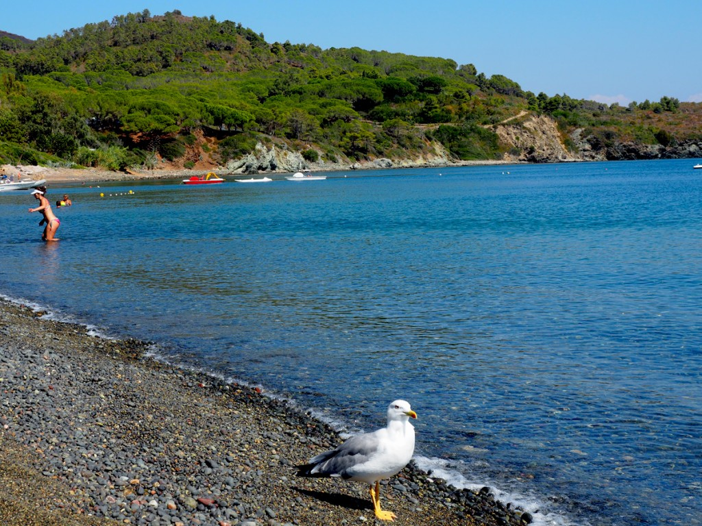 Elba - Strand Margidore in Lacona