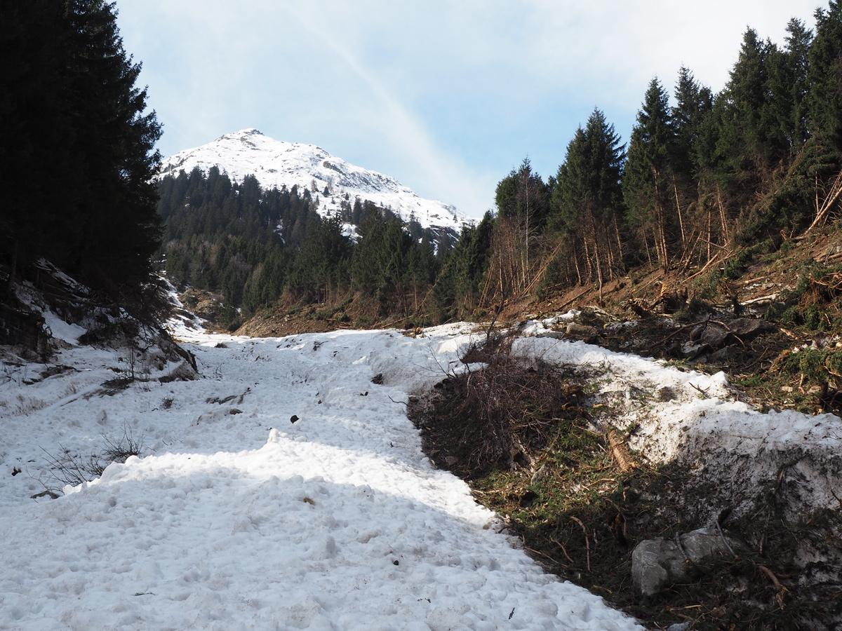 Schneeschuhwanderung Fischbühel