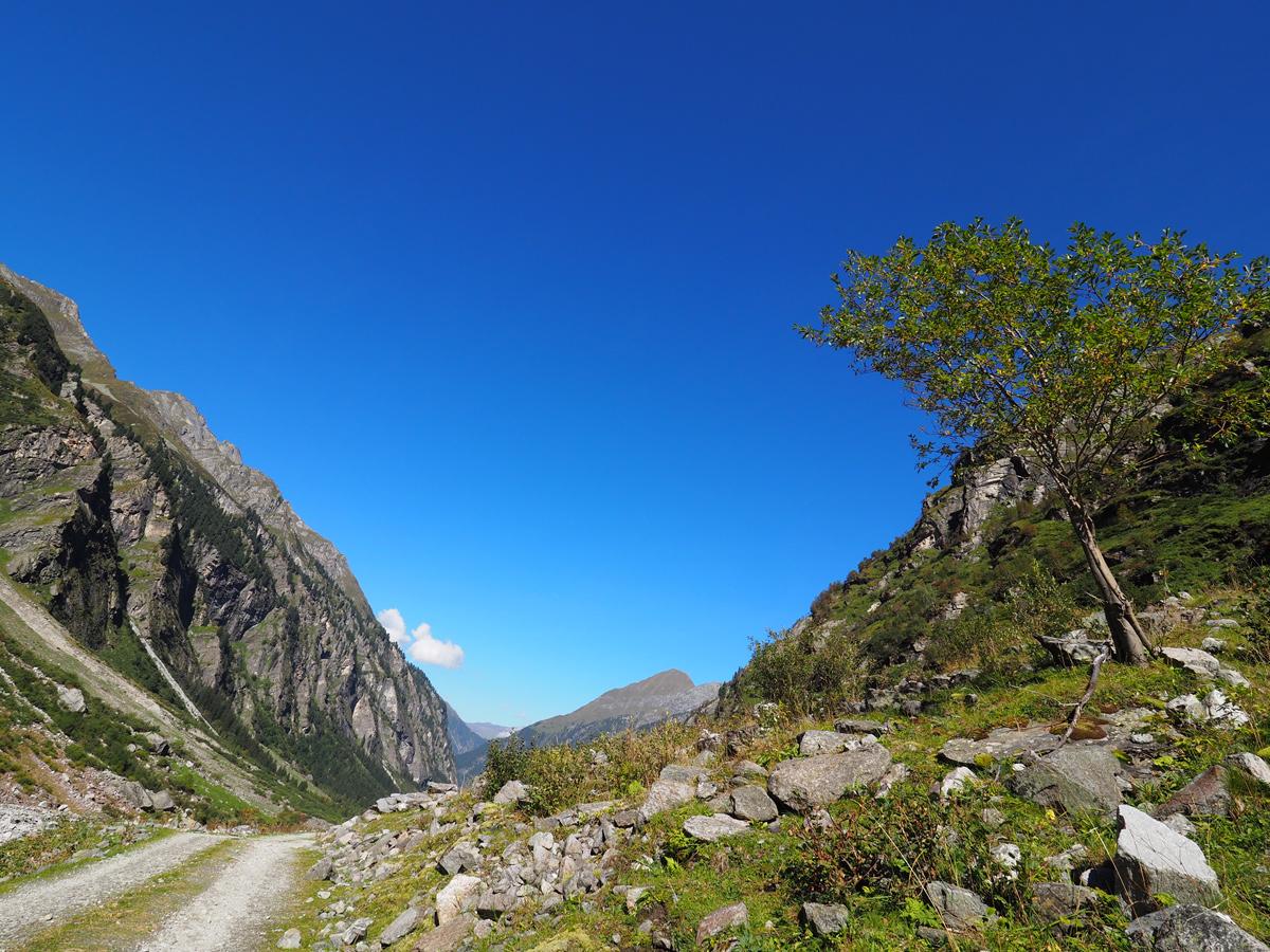 Wandern im Zillertal - Floitental