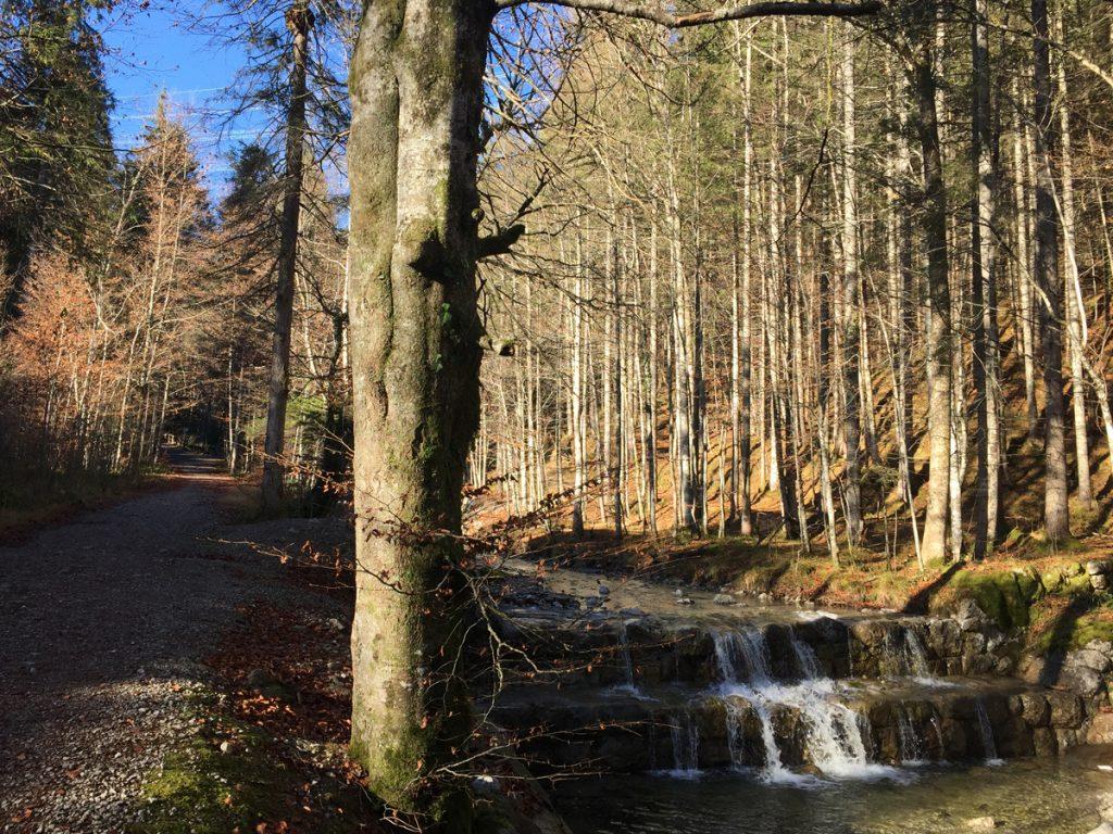 Heimgarten - Walchensee Winterwanderung