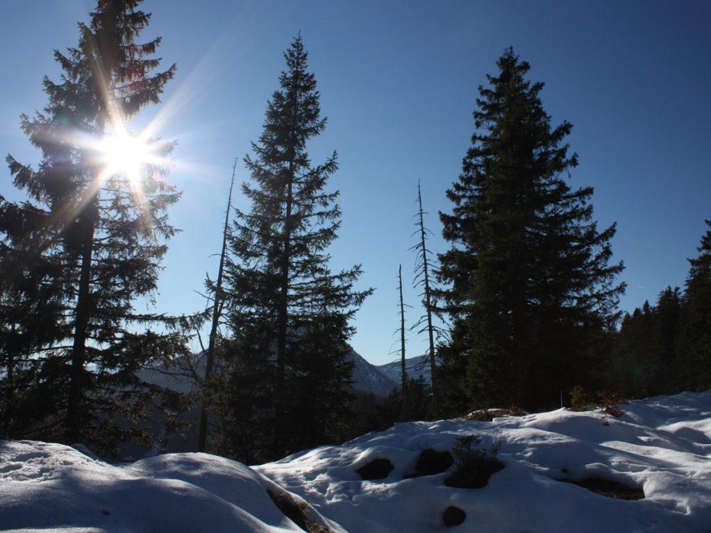 Heimgarten Winterwanderung