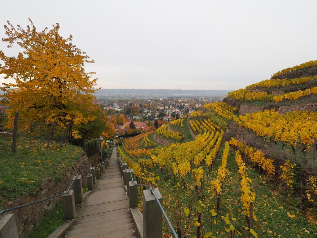 Radebeul Spitzhaustreppe