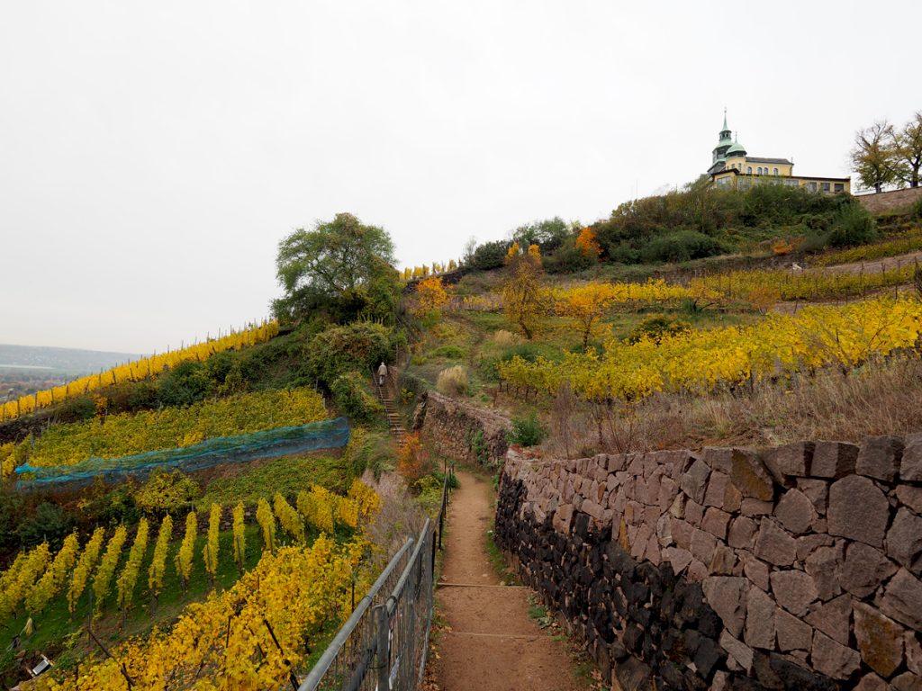 Radebeul Wanderweg