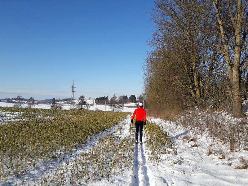 Langlaufen Dachau, Webling