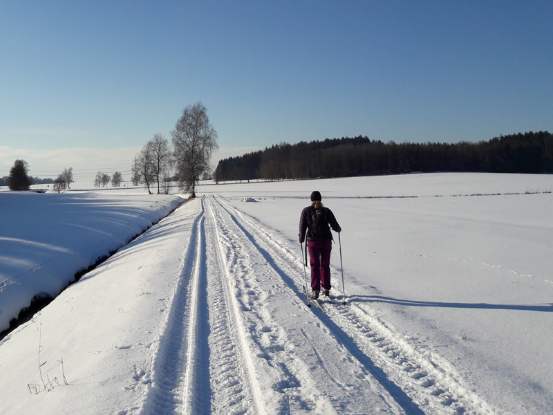Langlaufen Dachau