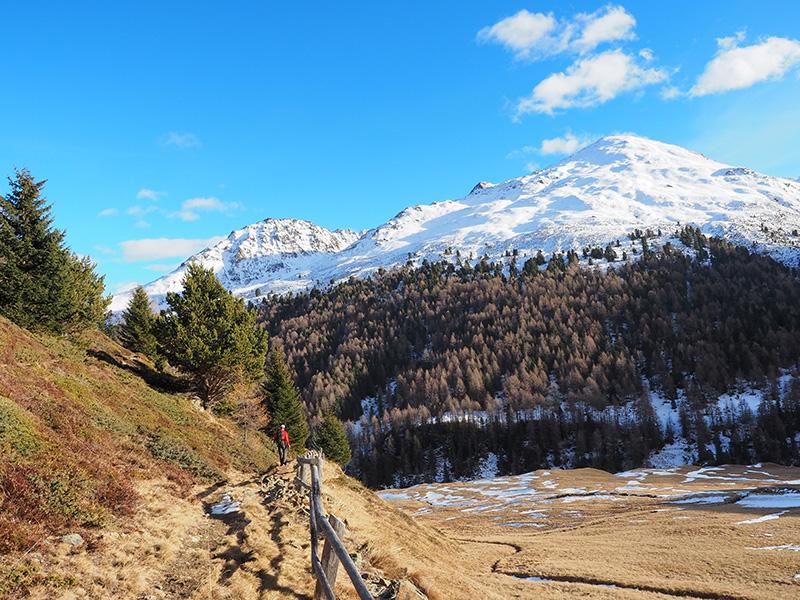Winterwanderung Rojental