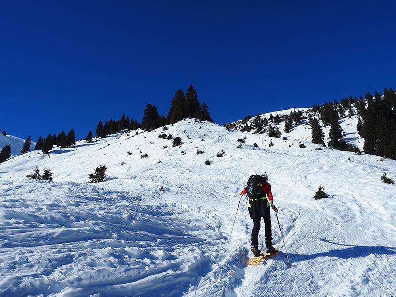 Schneeschuhwandern Rauth - Krinnenspitze