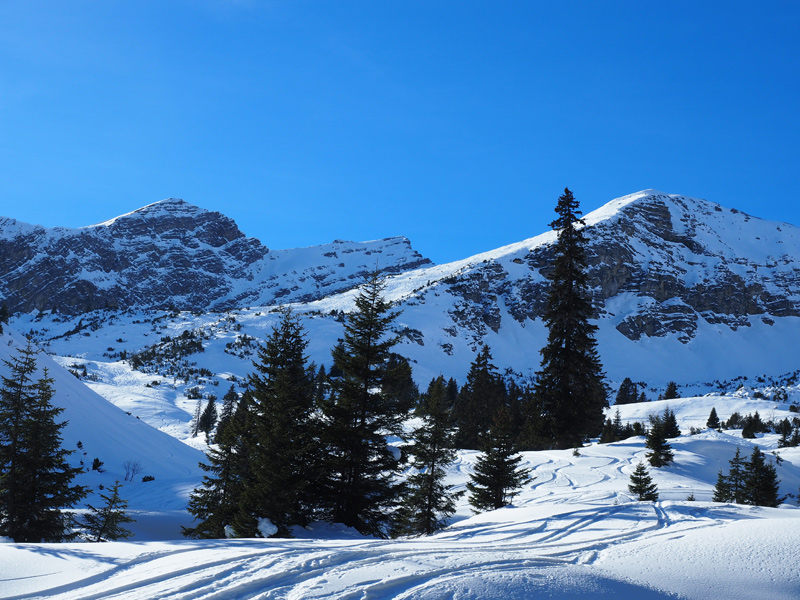 Schneeschuhwandern Rinnen - Galtjoch