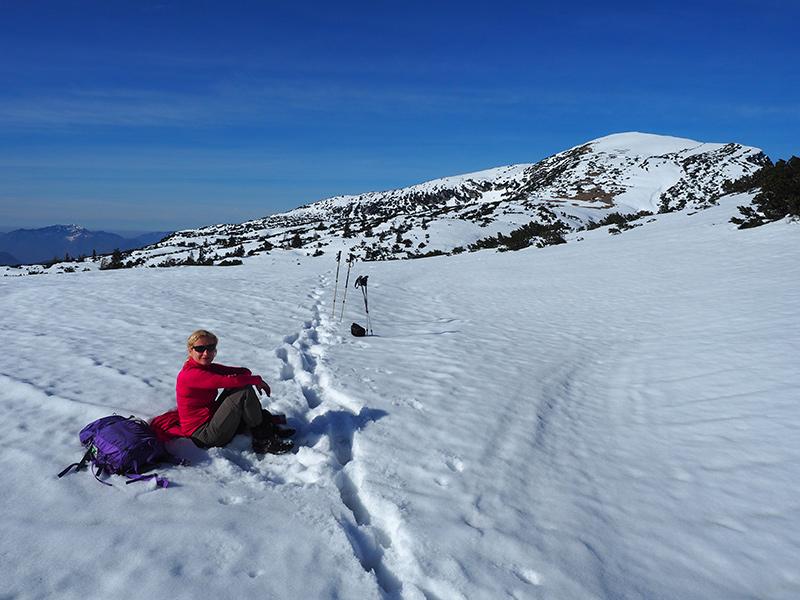 Winterwandern-Hoher-SarsteinWinterwandern-Hoher-Sarstein