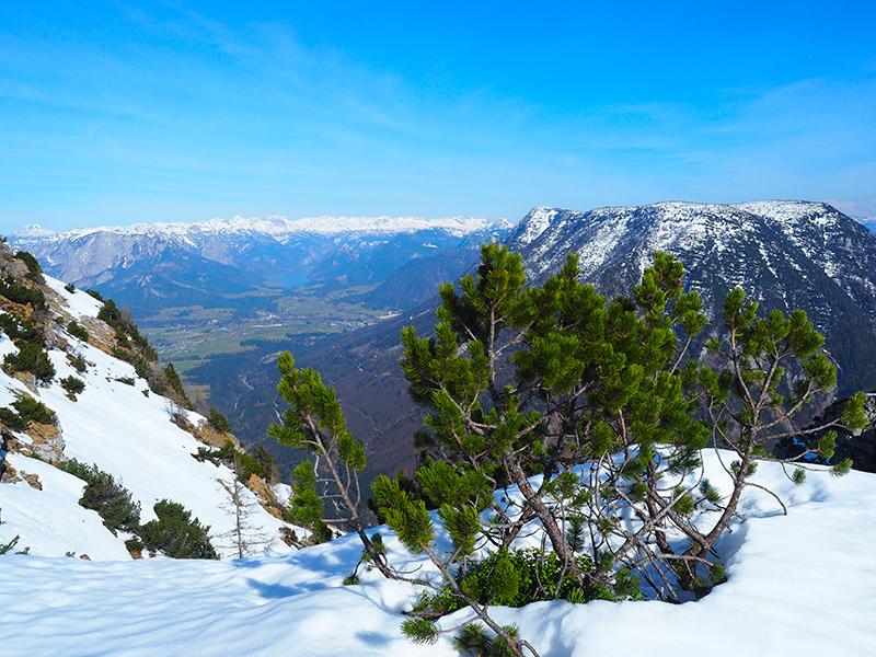 Winterwandern Hoher Sarstein