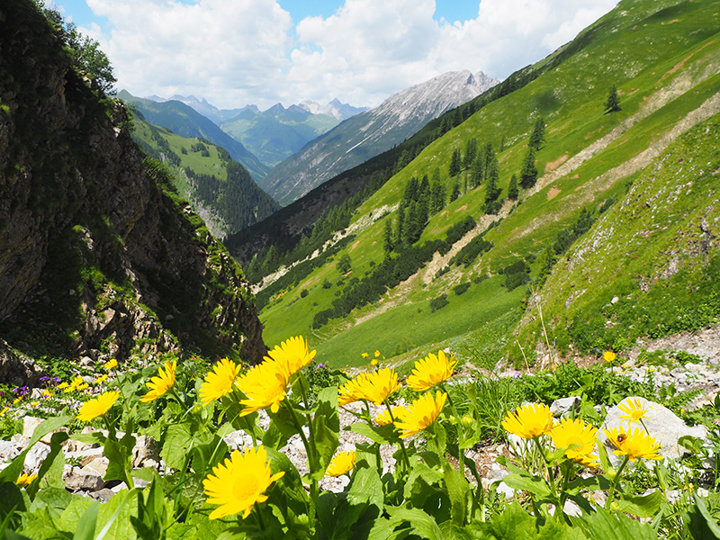 Wandern Memminger Hütte im Lechtal