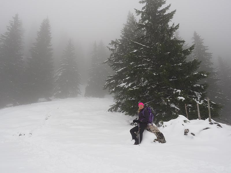 Winterwandern - Breitenstein