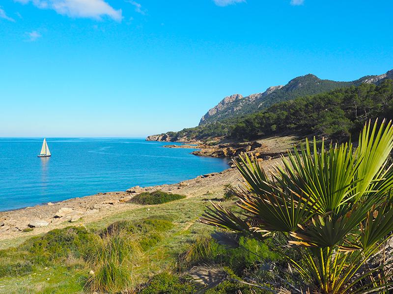 Malloca - Alcudia, Strand S´`Illot