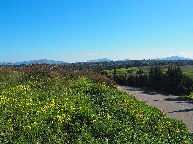 Mallorca - Radfahren im Frühling