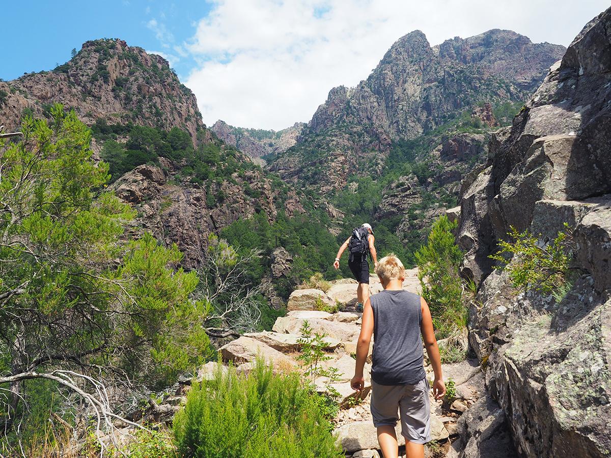 Wandern auf Korsika - Foret de Bonifatu