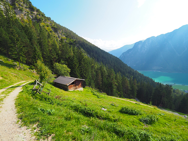 Wandern Achensee - Dalfaz Alm