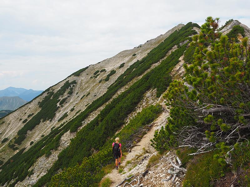 Wandern Achensee - Seebergspitze, Wanderweg