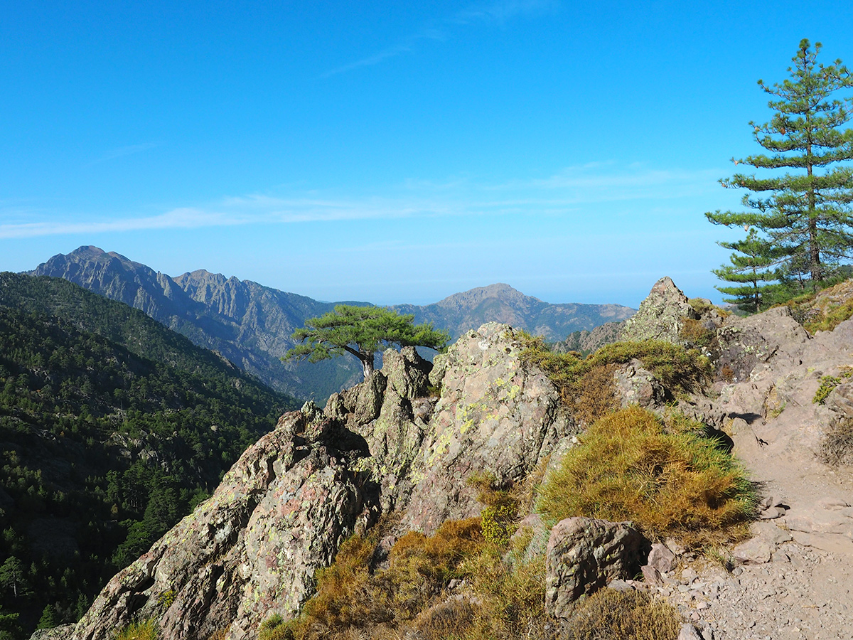 Wandern auf dem GR20 - Refuge d'Ortu di u Piobbu