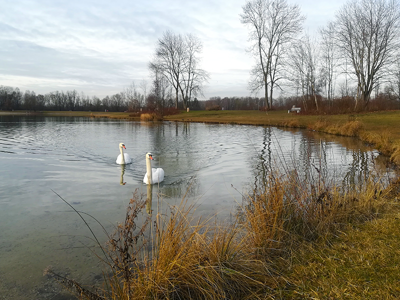Karlsfelder See - Spaziergang