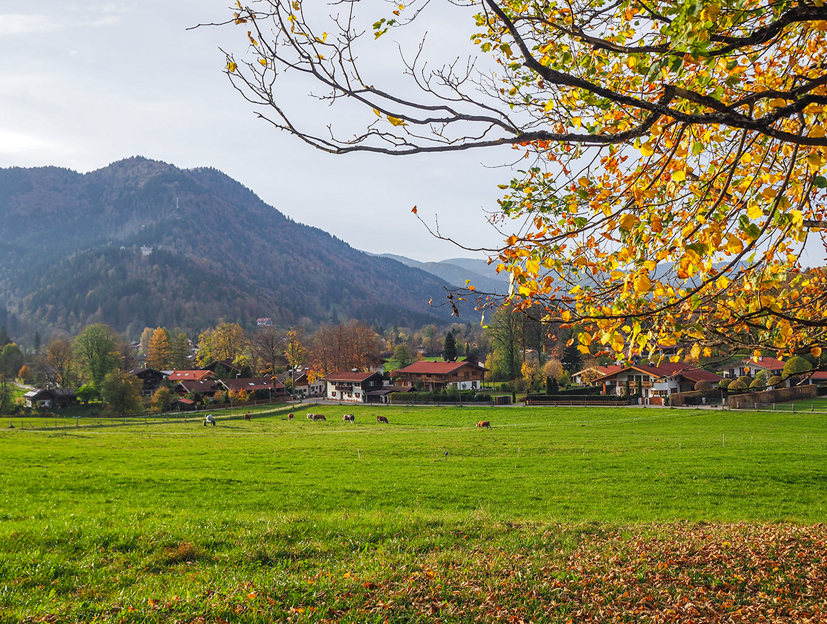 Wandern im Herbst am Tegernsee - Rottach-Egern