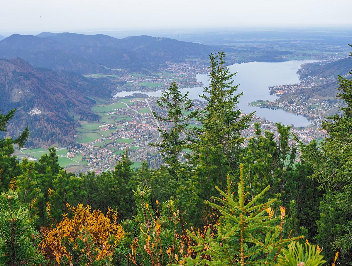Wandern Tegernsee - Wallberg im Herbst