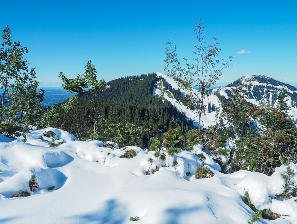 Winterwandern Grubeck - Ausblick au Wallberg & Setzberg