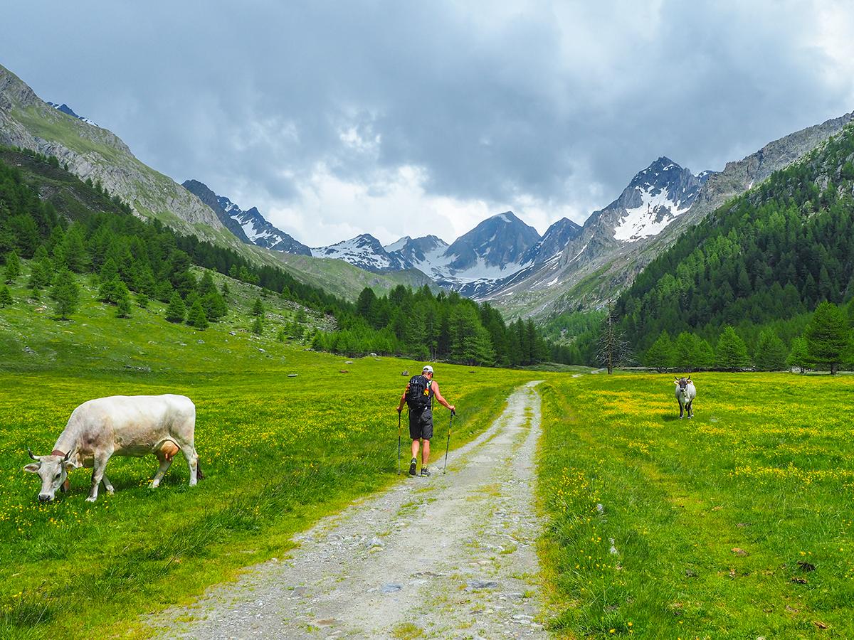 Meraner Höhenweg Wandern - Eishof - Eisjoch