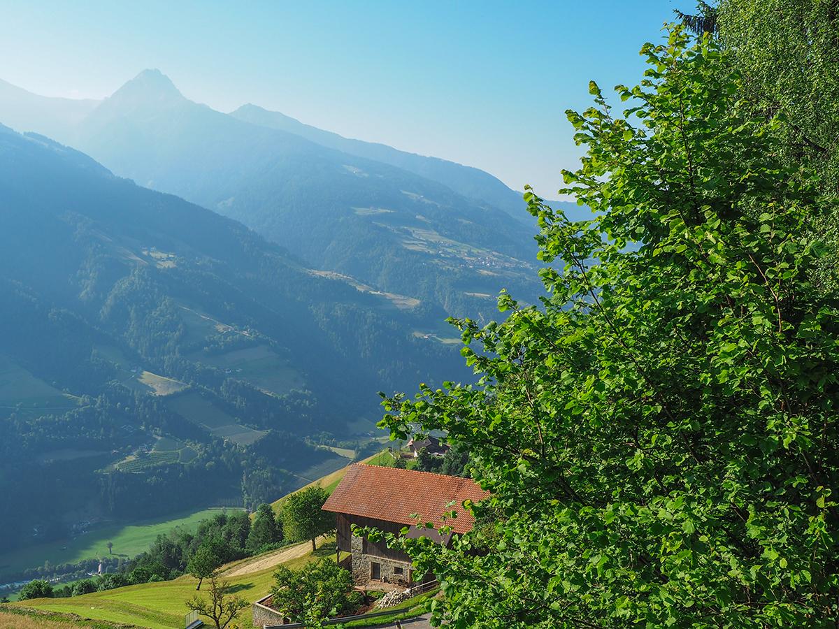 Meraner Höhenweg Wandern Magdfeld - Hochmuth