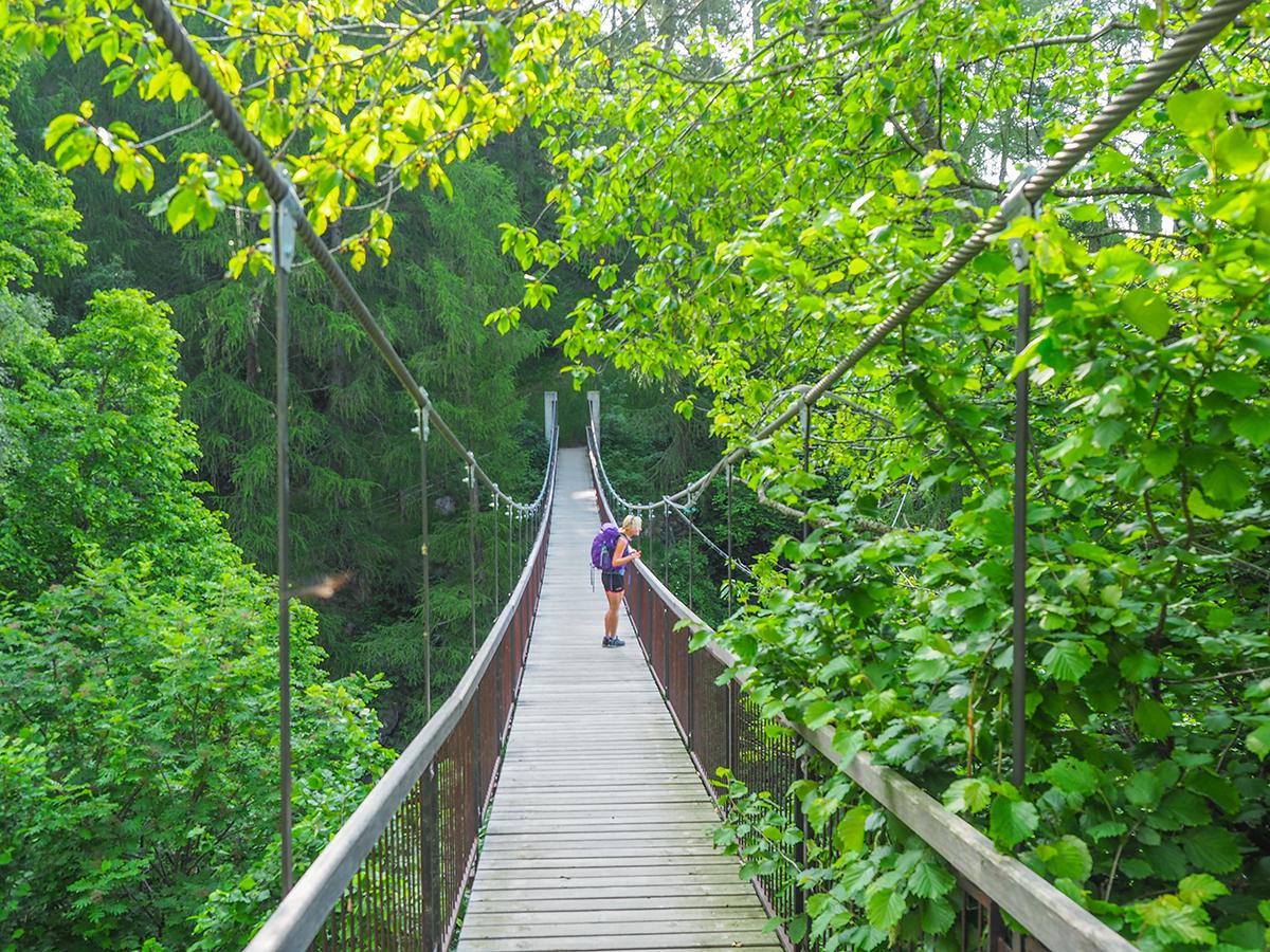 Wandern Meraner Höhenweg - Pichhof, Hängebrücke