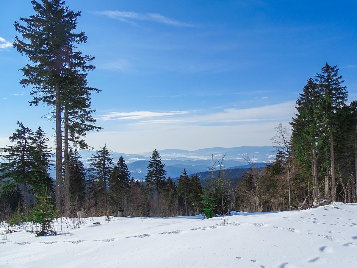 Wanderurlaub im Winter in Bayern - Bayerischer Wald
