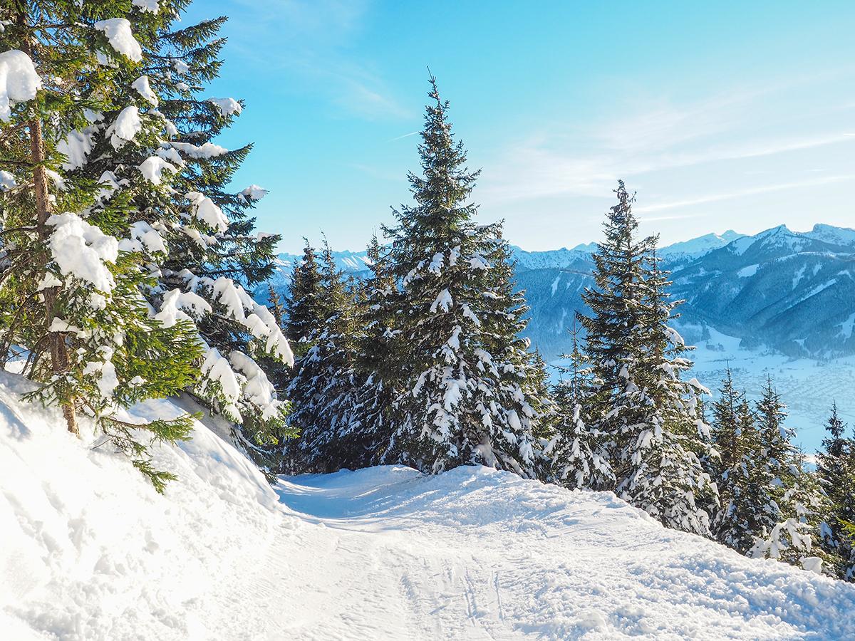 Schneeschuhwandern Hörnle