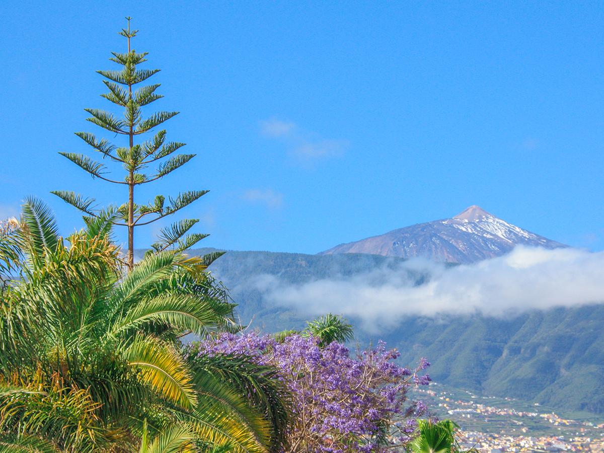 Puerto de la Cruz - Pico del Teide
