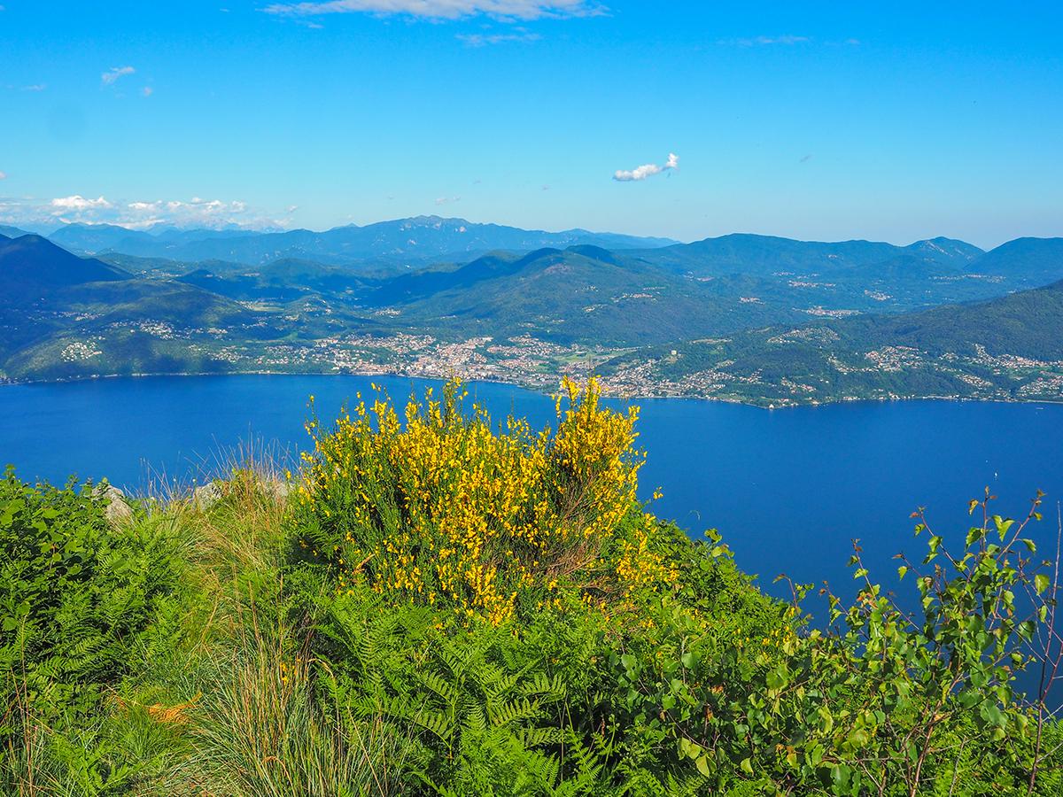 Wandern Lago Maggiore, Cannero - Cima di Morissolo