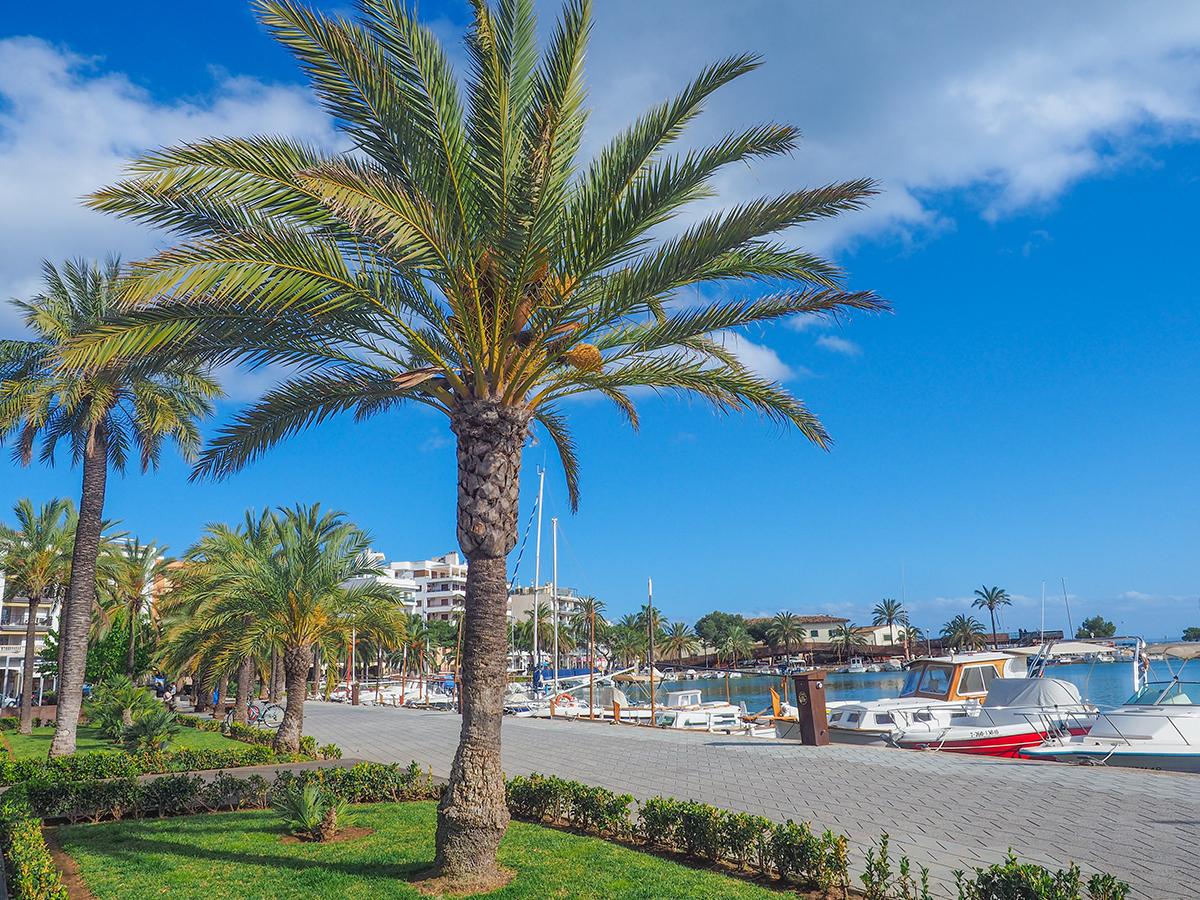 Mallorca - Port d'Alcudia, Hafen