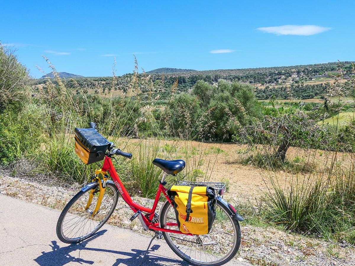 Mallorca Radreise - Petra Landschaft