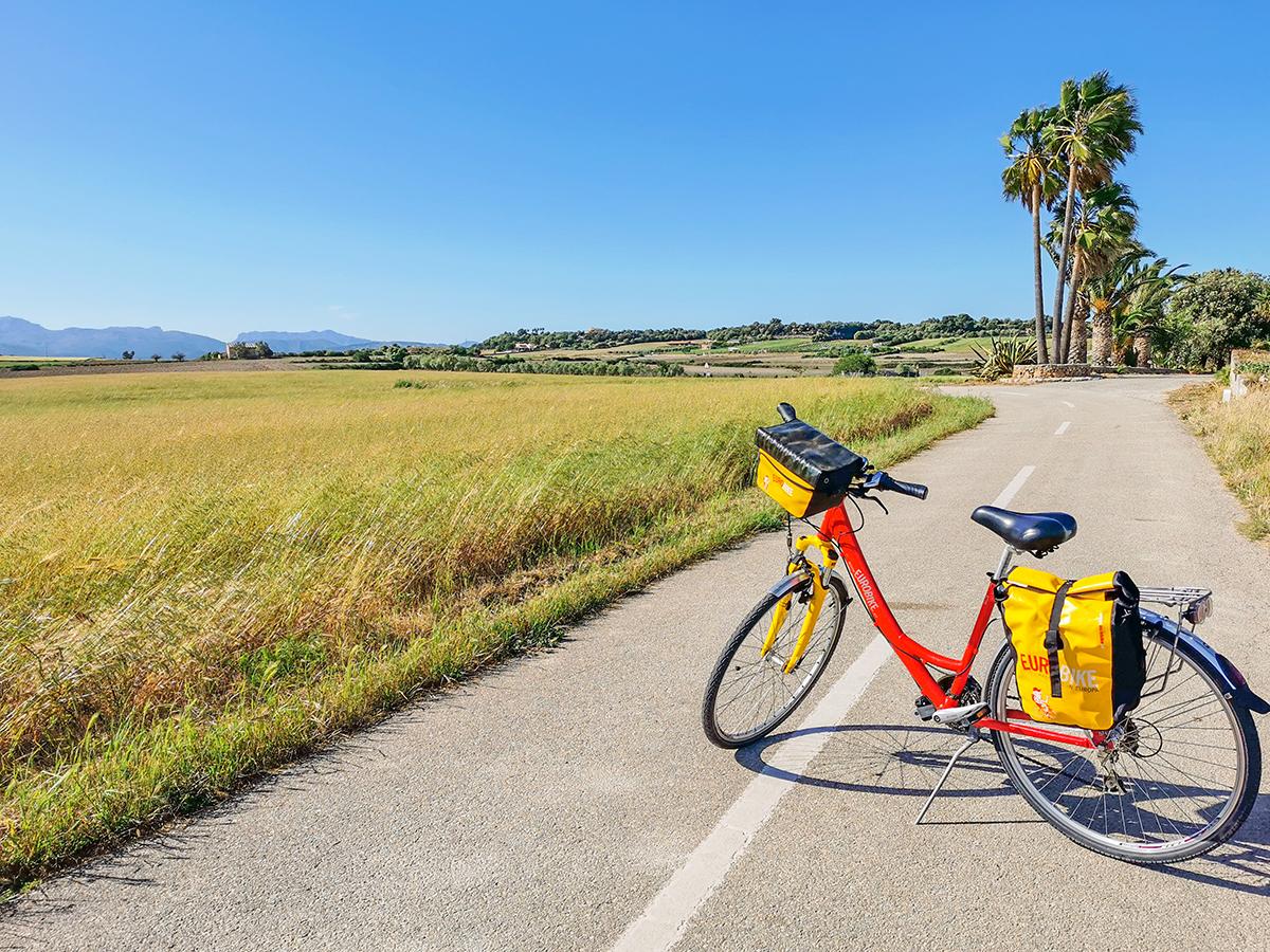 Mallorca Radreise - Santa Margalida Landschaft