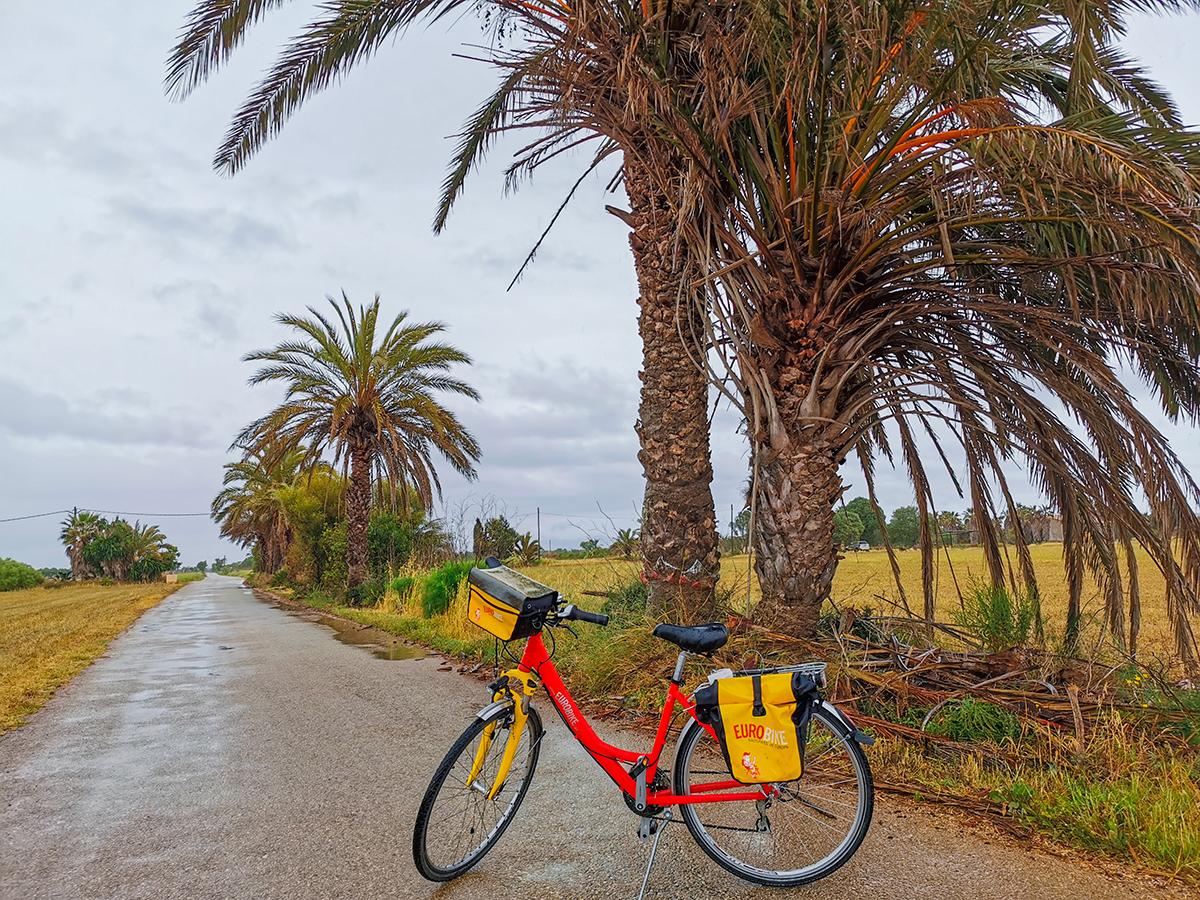Mallorca Radreise - Erste Etappe, Eurobike-Leihrad