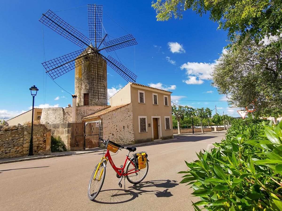 Mallorca Radreise - Llubi Windmühle