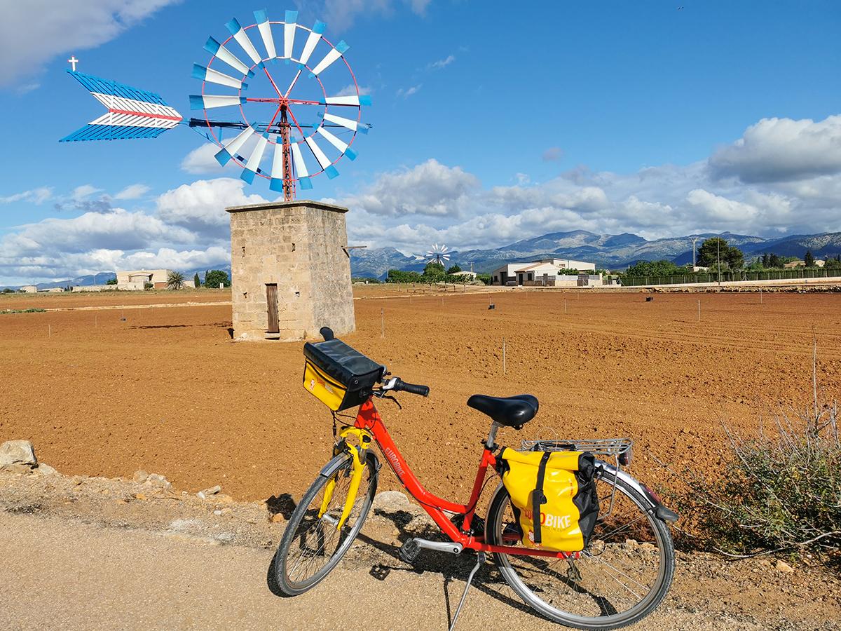 Mallorca Radreise - Muro Windmühle