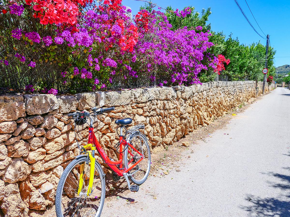 Mallorca Radreise - Radfahren & Wandern, Halbinsel La Victoria