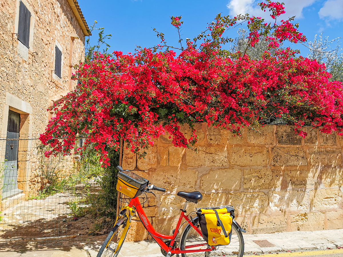 Mallorca Radreise - Es Llombards