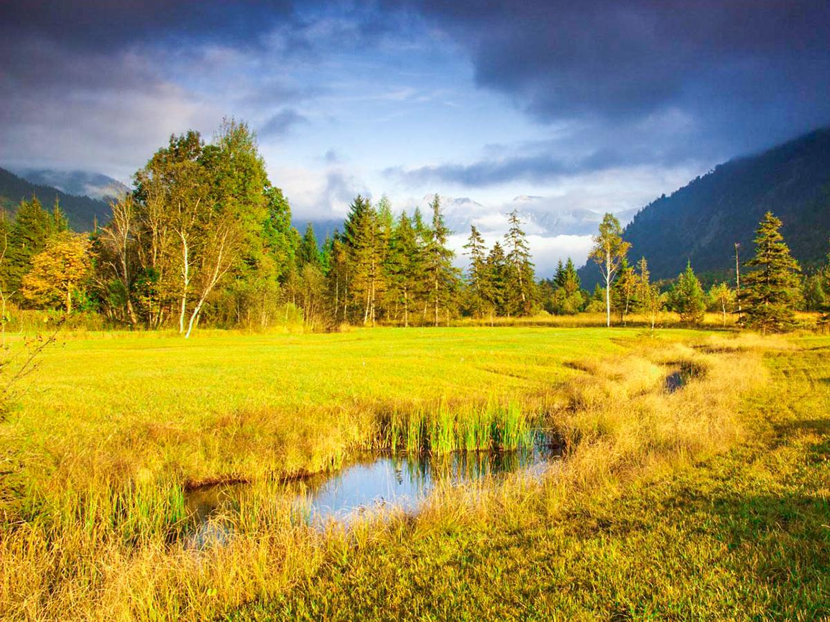 Meditationsweg Ammergauer Alpen - Ammerquellen